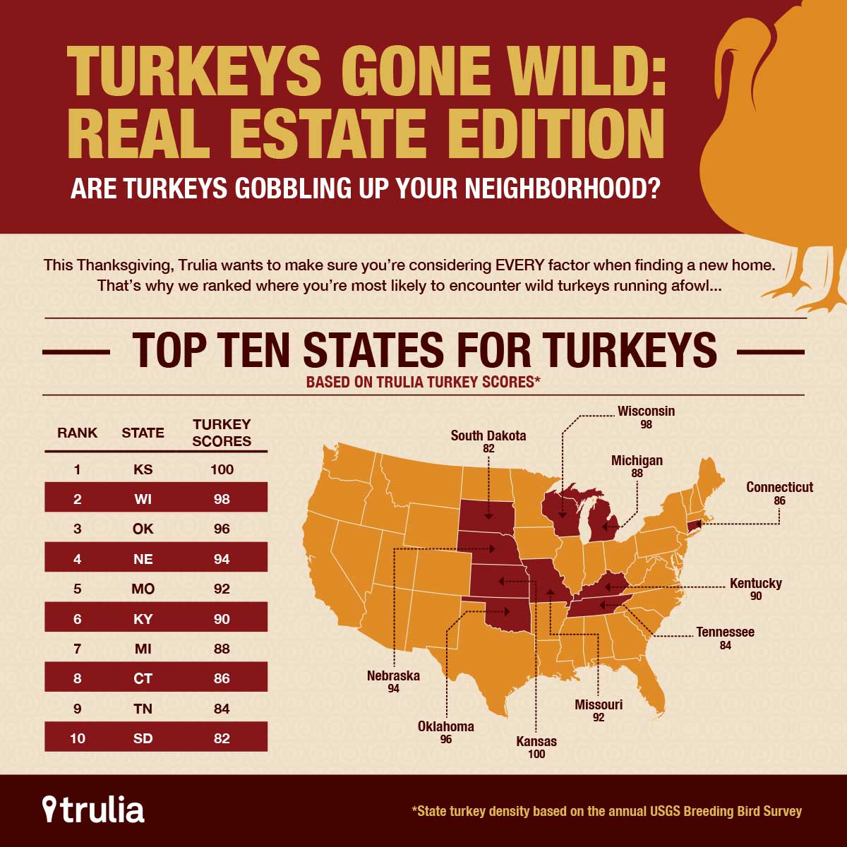 graphic design turkey infographic neighborhood